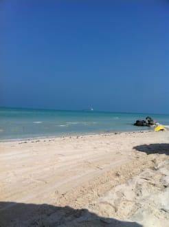 Strand - Hotel Danat Jebel Dhanna Resort