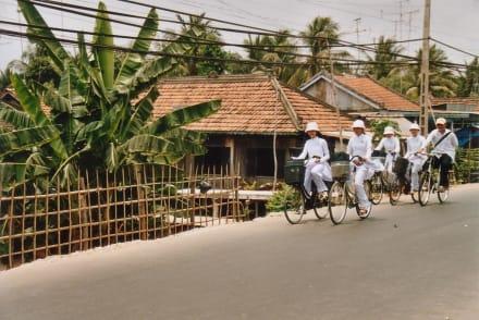 Radfahrer - Transport