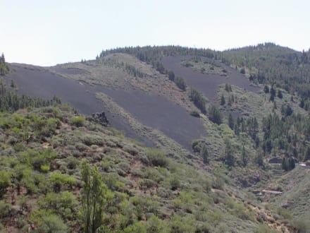 Vulkanaschefeld - Bergwelt