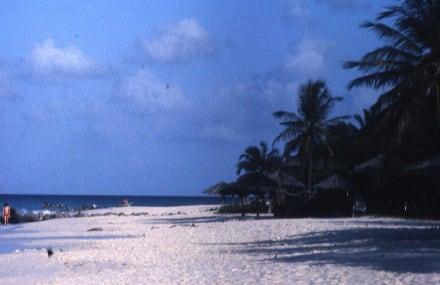 Der ideale Strandlauf über 12 km - Strand Eagle Beach