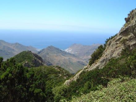 Im Anaga-Gebirge - Anaga Gebirge