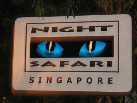 Night Safari Singapore - Night Safari