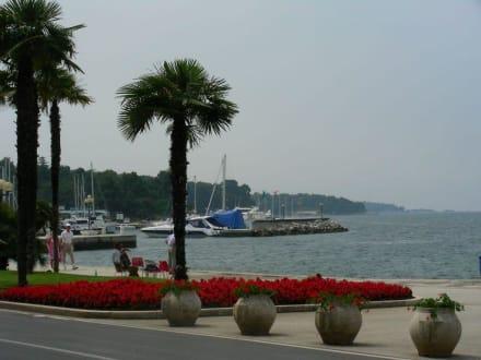 Hafen - Hafen Porec