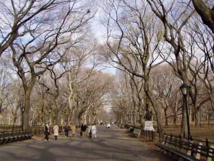 Central Park (1) - Central Park