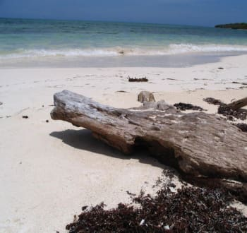 Halbinsel Sabinal - Cayo Sabinal