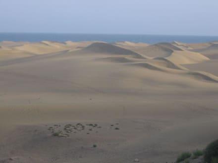 """Die Sahara"" - Dünen von Maspalomas"