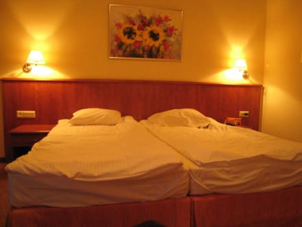 Blick ins Zimmer - Hotel Arka Medical Spa