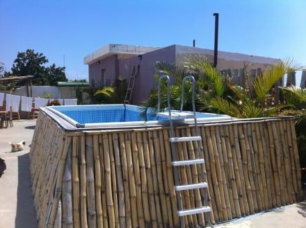 dachterrasse mit pool bild adam suites hotel in santo domingo dominikanische republik. Black Bedroom Furniture Sets. Home Design Ideas