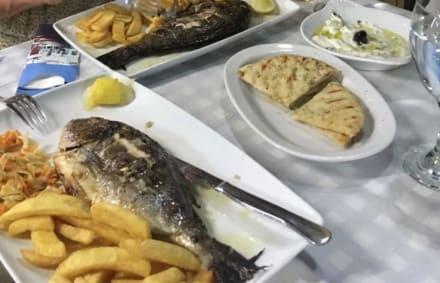 Goldbrasse mit Tsatziki und Pittabrot - Restaurant Kastri
