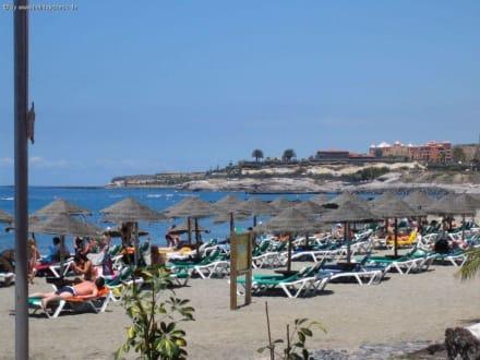 Strand 800m vom Hotel Jacaranda entfernt - Strand El Duque