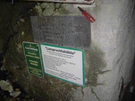Eingang zur  Lamprechtshöhle - Lamprechtshöhle
