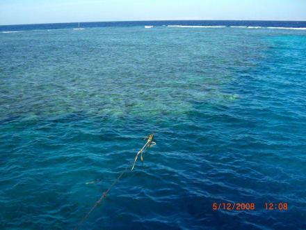 Ankerplatz am Korallenriff - Ausflug nach El Gouna