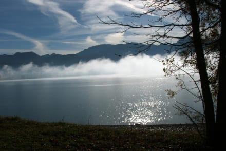 Wenn sich der Nebel lichtet... - Forggensee