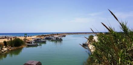 Der Hafen - Hafen Evrenseki