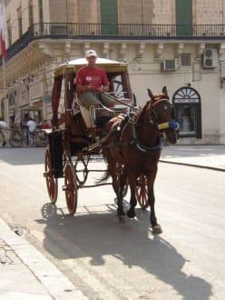 Pferdekutsche in Valletta - Transport