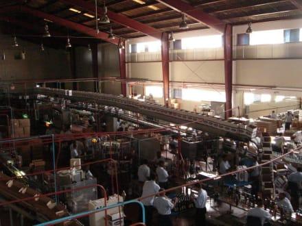 Hauptgebäude der Fabrik - Rumfabrik Brugal