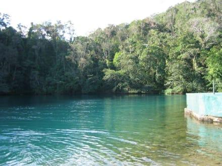 Blaue Lagune - Blaue Lagune