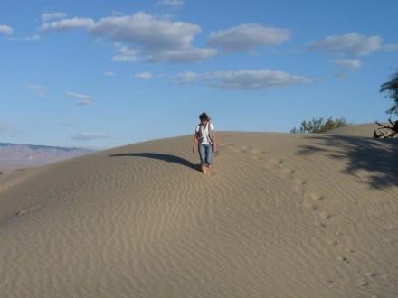 Mesquite Sand Dunes - Mesquite Sand Dunes