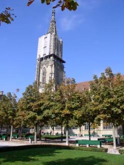 Berner Münster - Berner Münster