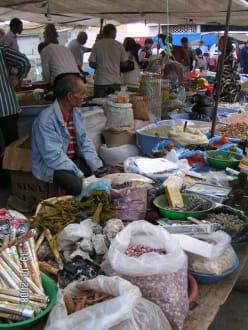 Kamelmarkt in Sousse - Markt Sousse
