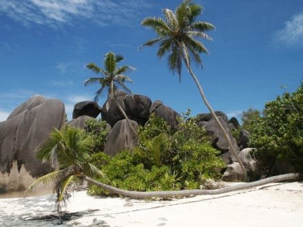 Schönster Strand der Welt - Anse Source d'Argent