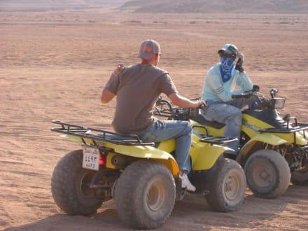 Quad Tour in die Wüste - Quad Tour Safaga