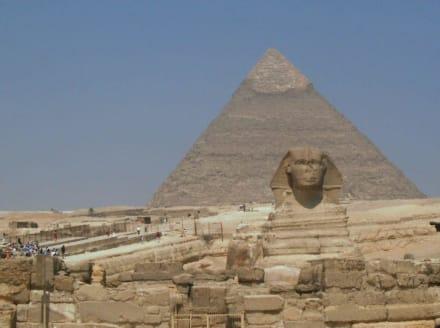 Sphinx vor den Pyramiden - Sphinx von Gizeh