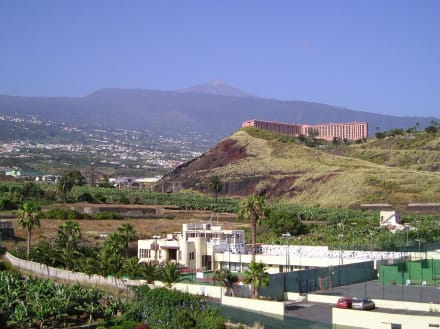 Blick ins Orotava - Tal und zum Teide - Orotava-Tal / Valle de Orotava