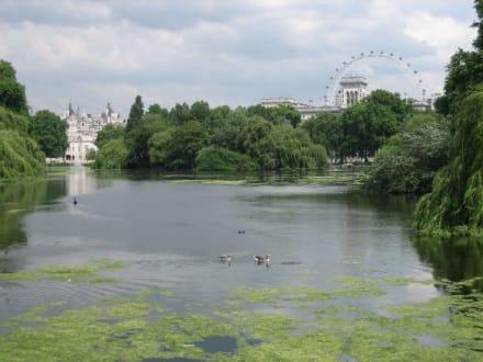 St. James Park - St. James's Park
