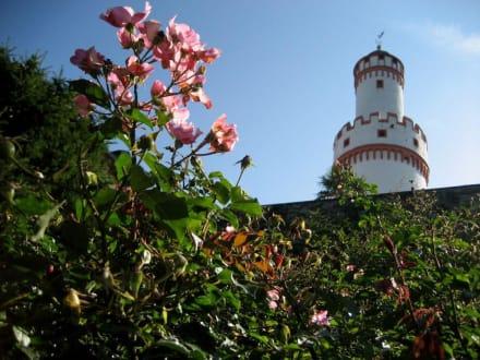 Bad Homburger Schloss - Schloß Homburg