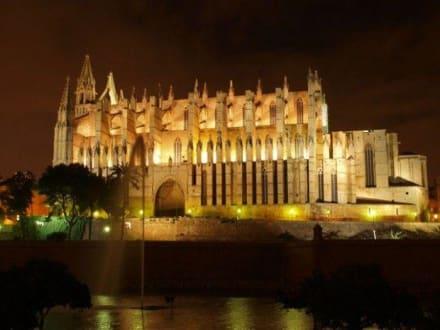Kathedrale bei Nacht - Kathedrale La Seu