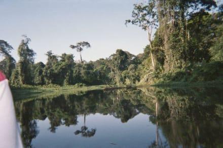 Tortuguero - Nationalpark Tortuguero