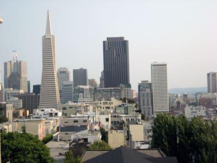 Dowton San Francisco - Downtown