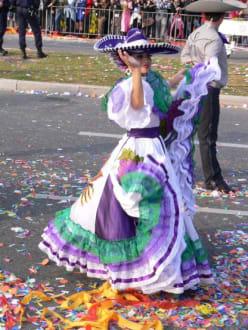 Auch sie hatten wunderschöne Kostüme - Blumenkorso