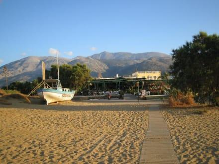 Vom Strand zur Tropical Beach Bar - Tropical Beach