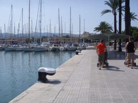 Am Hafen von Palma - Hafen Palma de Mallorca