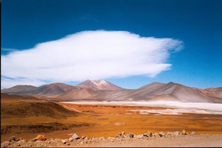 die Hochebene der Puna - Atacama und Nord-Chile