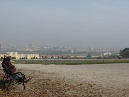 Blick auf Schloss Schönbrunn - Schloss Schönbrunn