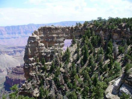 Grand Canyon North Rim - North Rim Grand Canyon