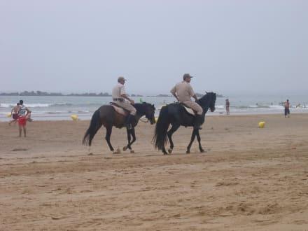 Strand - Strand Agadir