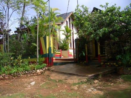 """Grabstätte von Bob Marley in """"Nine Miles"""" - Bob Marley Geburtshaus & Mausoleum"""