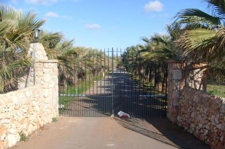 Finca an der Strecke - Radweg Playa de Palma nach Palma