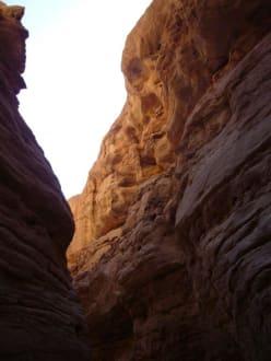 Coloured Canyon - Coloured Canyon