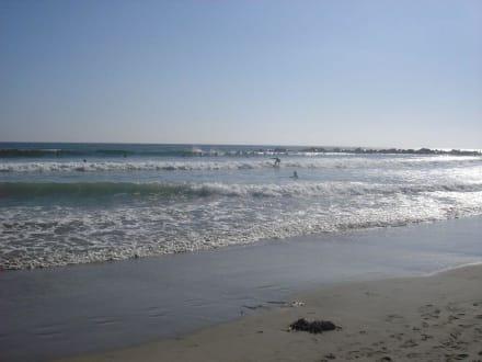 Venice Beach - Venice Beach