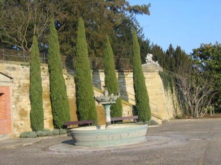 Springbrunnen - Wilhelma