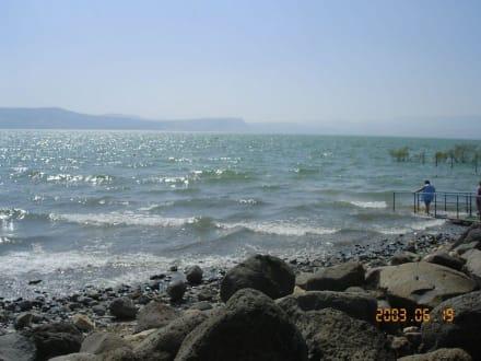 Fiume/Lago/Cascata - Lago Kinneret (lago di Tiberiade)