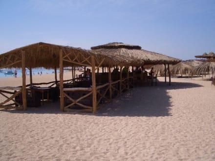 Bar Giftun Insel - Giftun / Mahmya Inseln