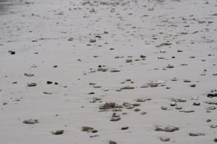 Strandabschnitt - Koh Rok