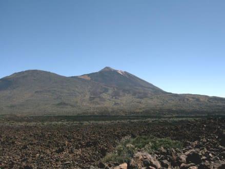 Schöner Blick auf den Teide - Teide Nationalpark