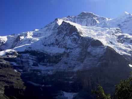 Jungfrau-Panoramaweg Eigergletscher-Wengernalp (4) - Kleine Scheidegg